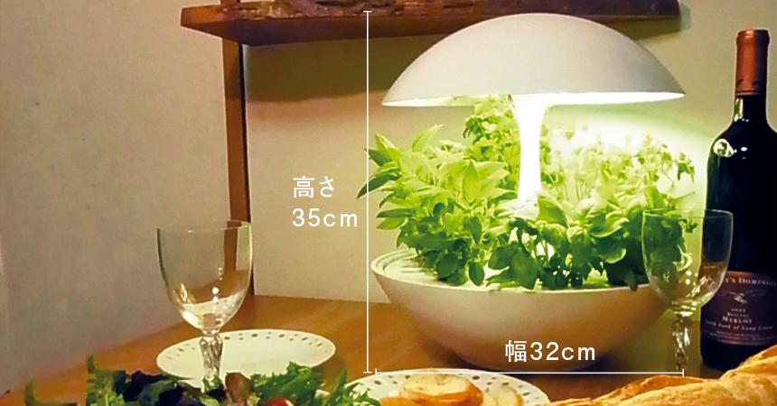 水耕栽培器サイズ