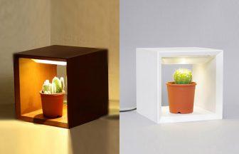 LED植物シェルフAkairn09